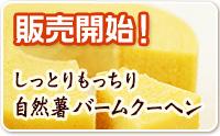 販売開始!しっとりもっちり自然薯バームクーヘン