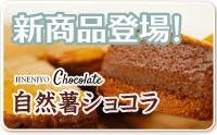 新商品登場!自然薯ショコラ